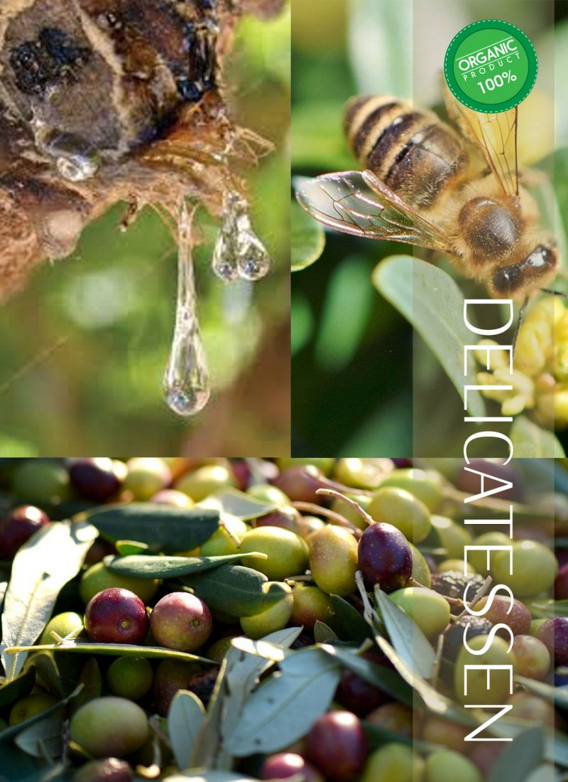 DELICATESSEN-Organics.jpg